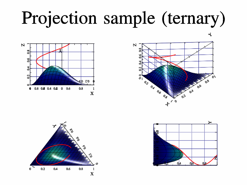 Example of ternary axis projections